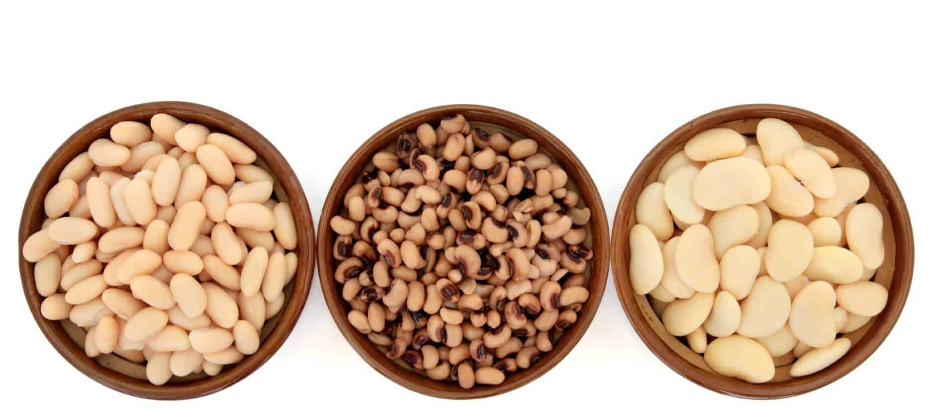 Bottom Line White Kidney bean