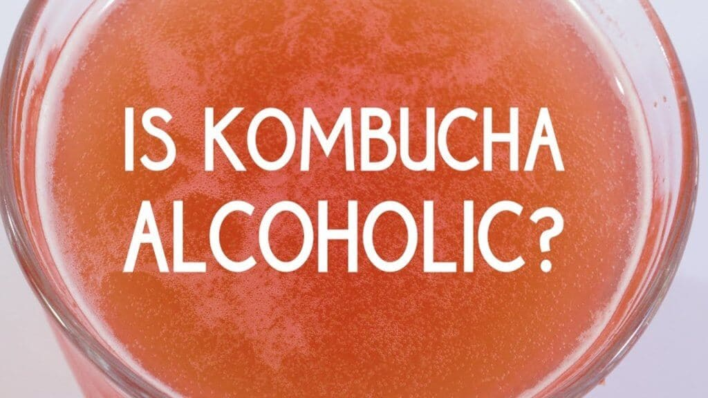 Is Kombucha Alcoholic