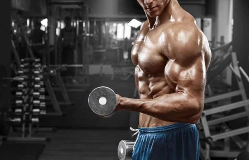 Muira Puama bodybuilding