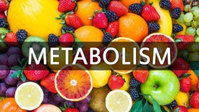 Natural Metabolism Booster