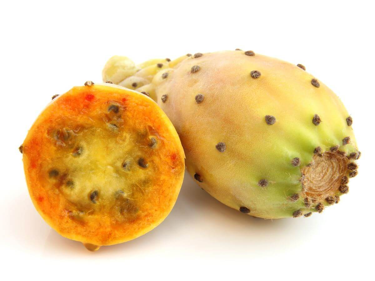 Prickly Pear and Weight Loss