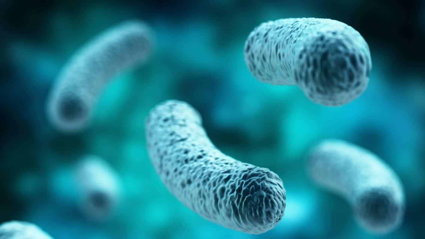 Probiotics Benefits