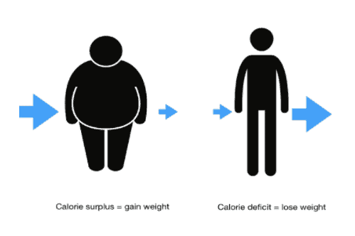 A comprehensive guide on how to lose weight update jun 2018 29 calories in calories out is a myth malvernweather Images