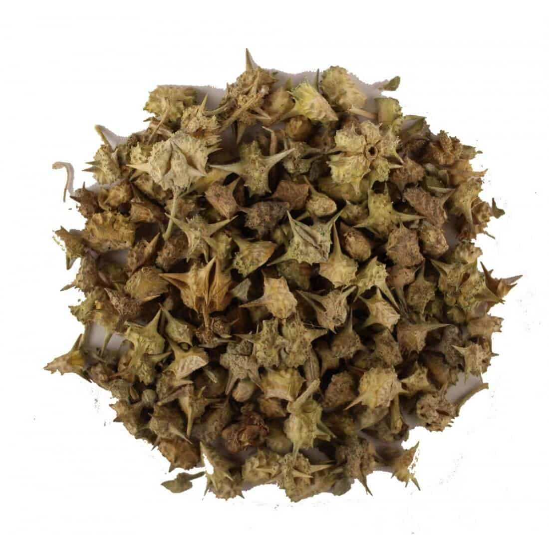 Tribulus-Terrestris Benefits