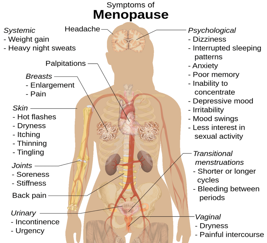 Mood swings weight gain sex humaria