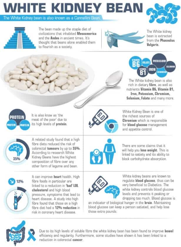 White Kidney Bean Benefits