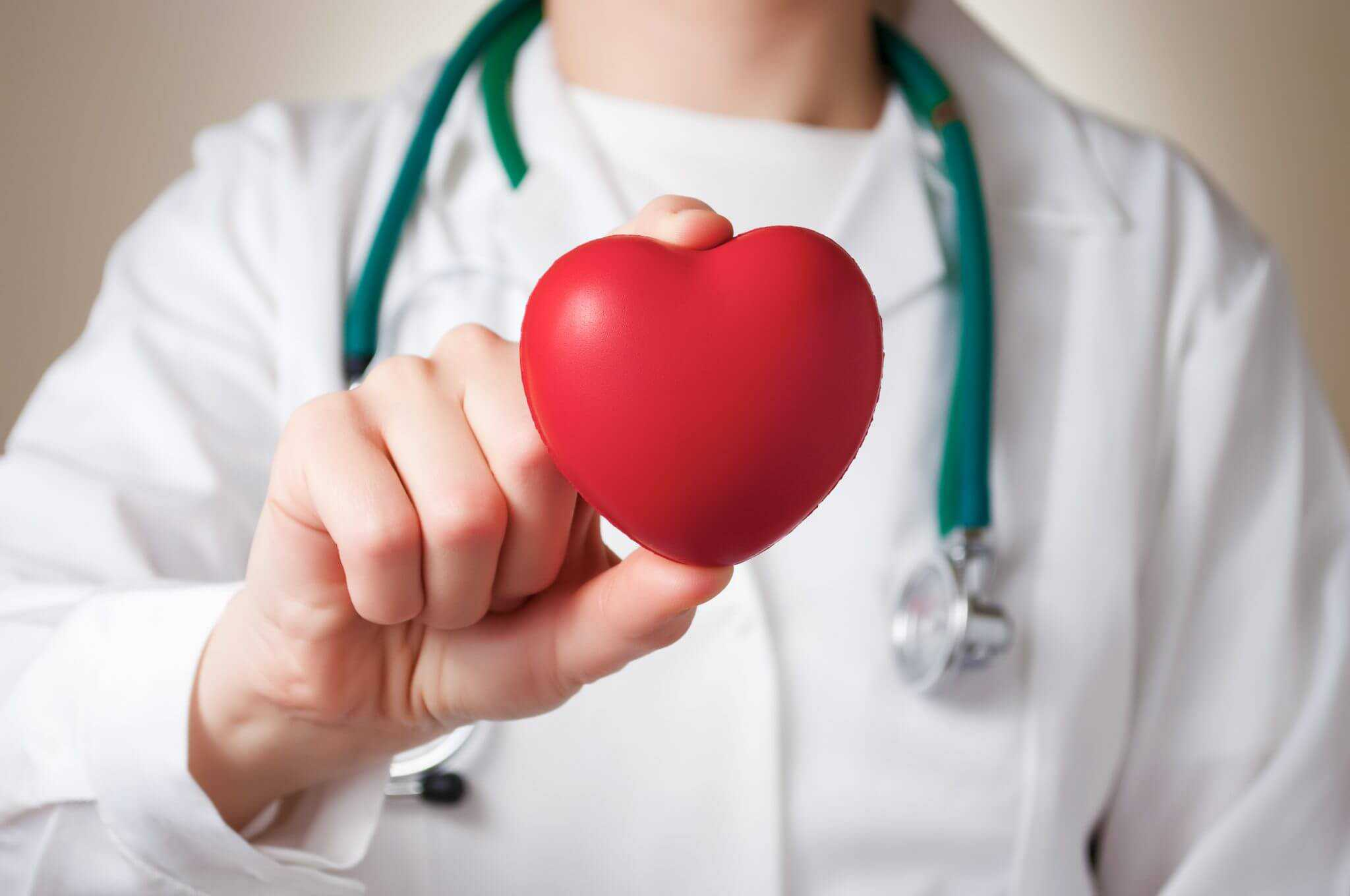 White Kidney Bean Heart Health