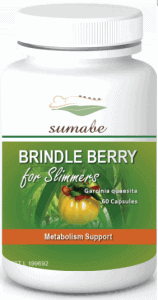 Brindleberry 5000 Review