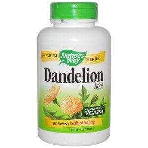 Dandelion Review