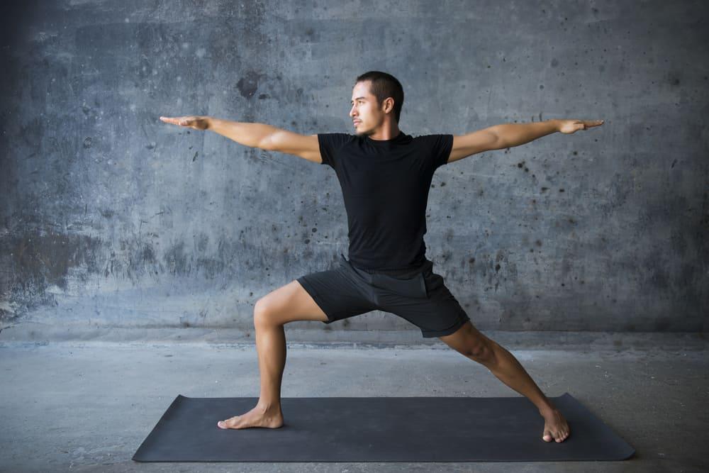 DDP Yoga Ingredients