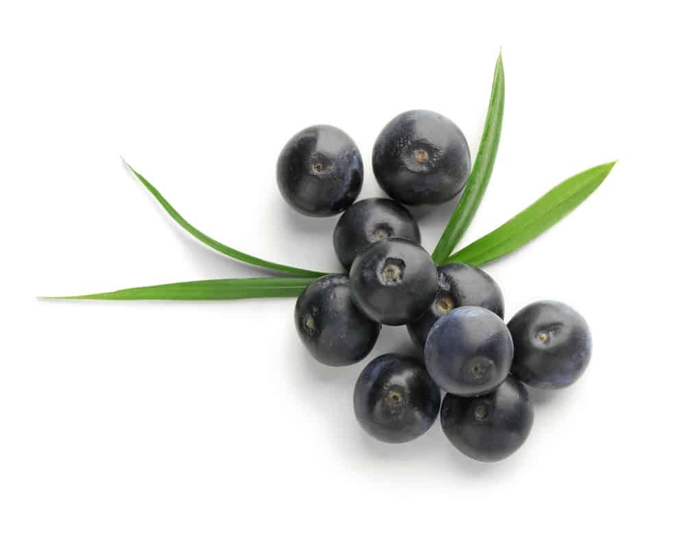 exotic fruit acai