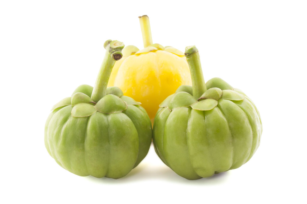 garcinia-cambogia-fruit-product-image