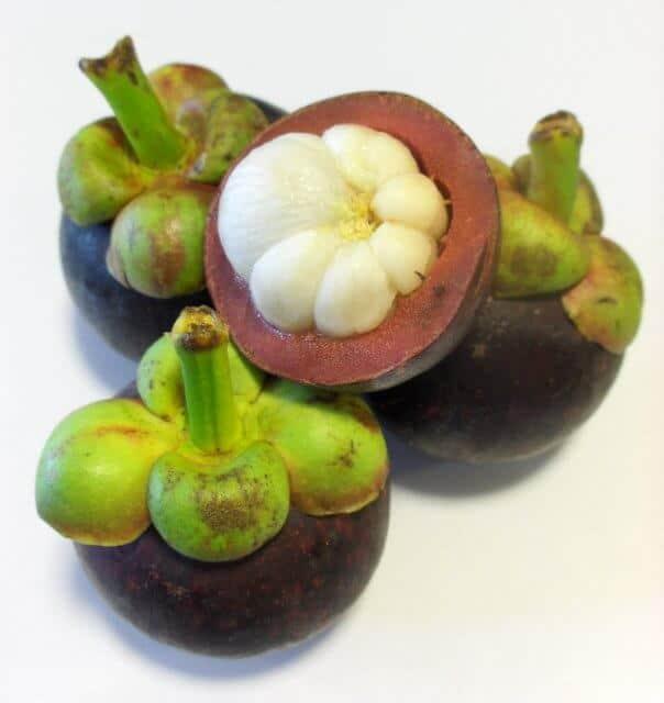 Visalus ingredients-garcinia-cambogia