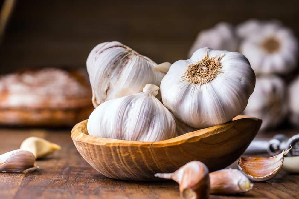 Garlic and Immunity