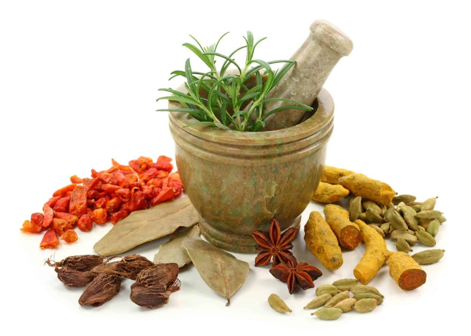 Buy herbal phen fen - Herbal Appetite Suppressants