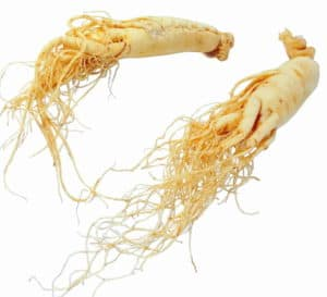Korean Ginseng Review