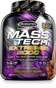 Mass-Tech Extreme 2000 Review