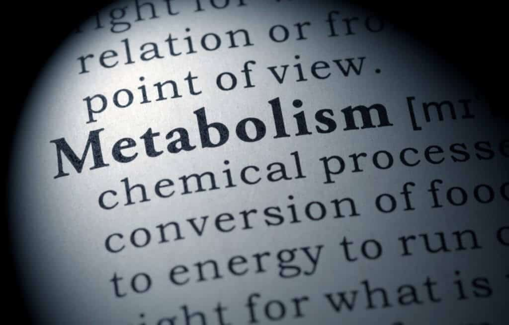 can metabolife boost metabolism
