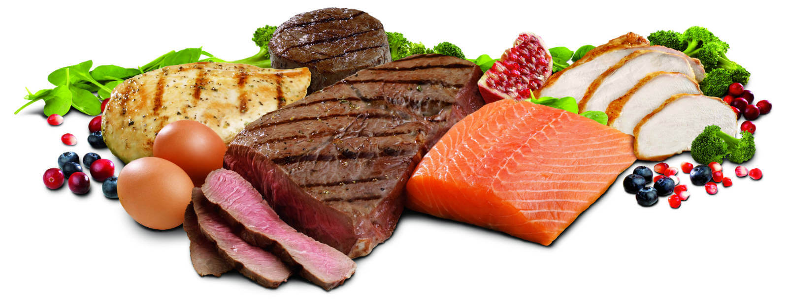 optimal 51 protein