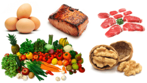 Paleo Diet Review