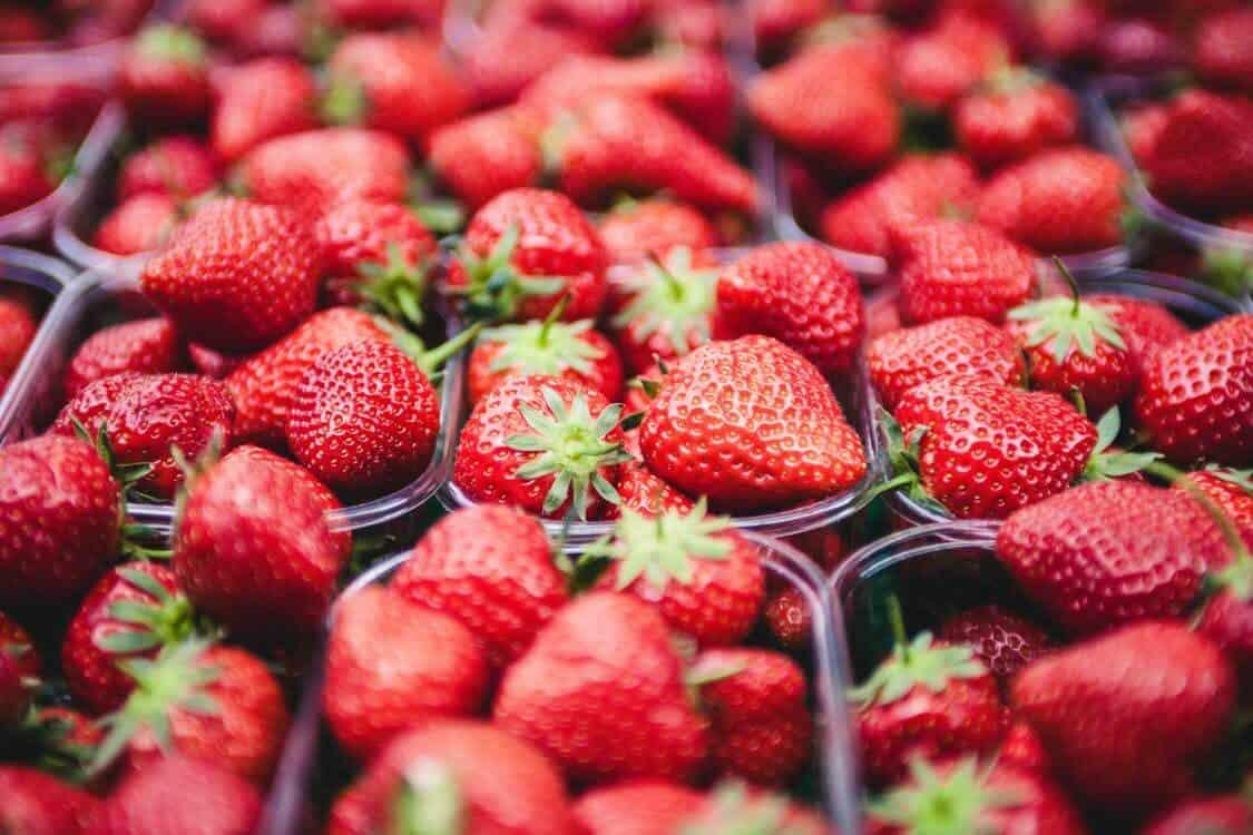 labrada lean body strawberry recipe