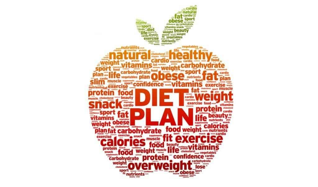 Types Of Popular Diet Plans