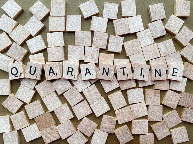 The Quarantine Diet Customer Testimonials