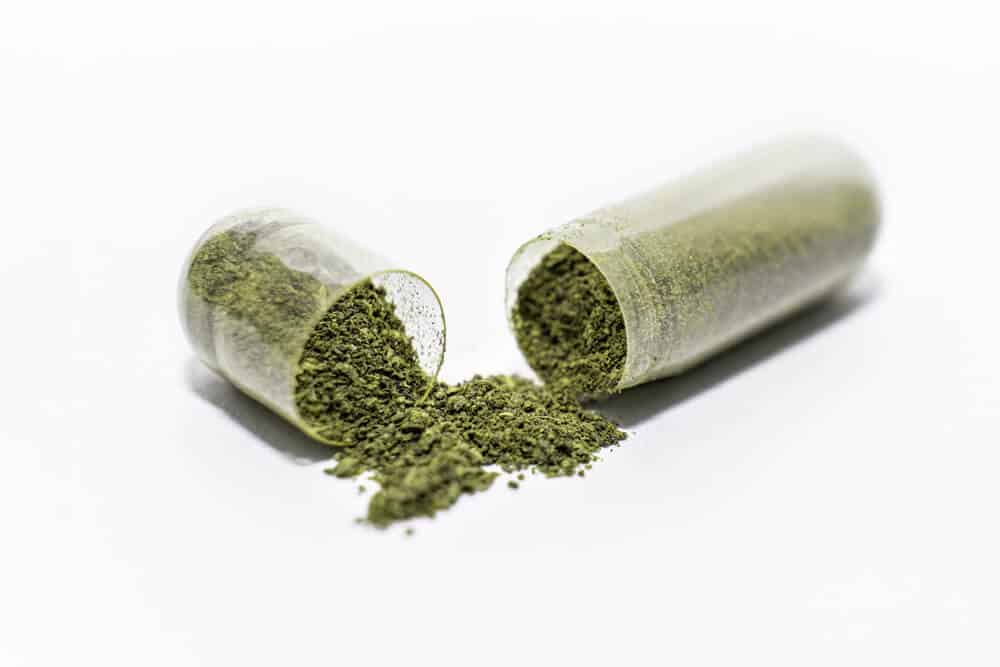 Seed Probiotic Ingredients