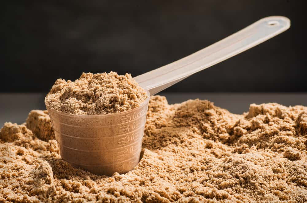What is Performance Inspired Plant-Based Protein