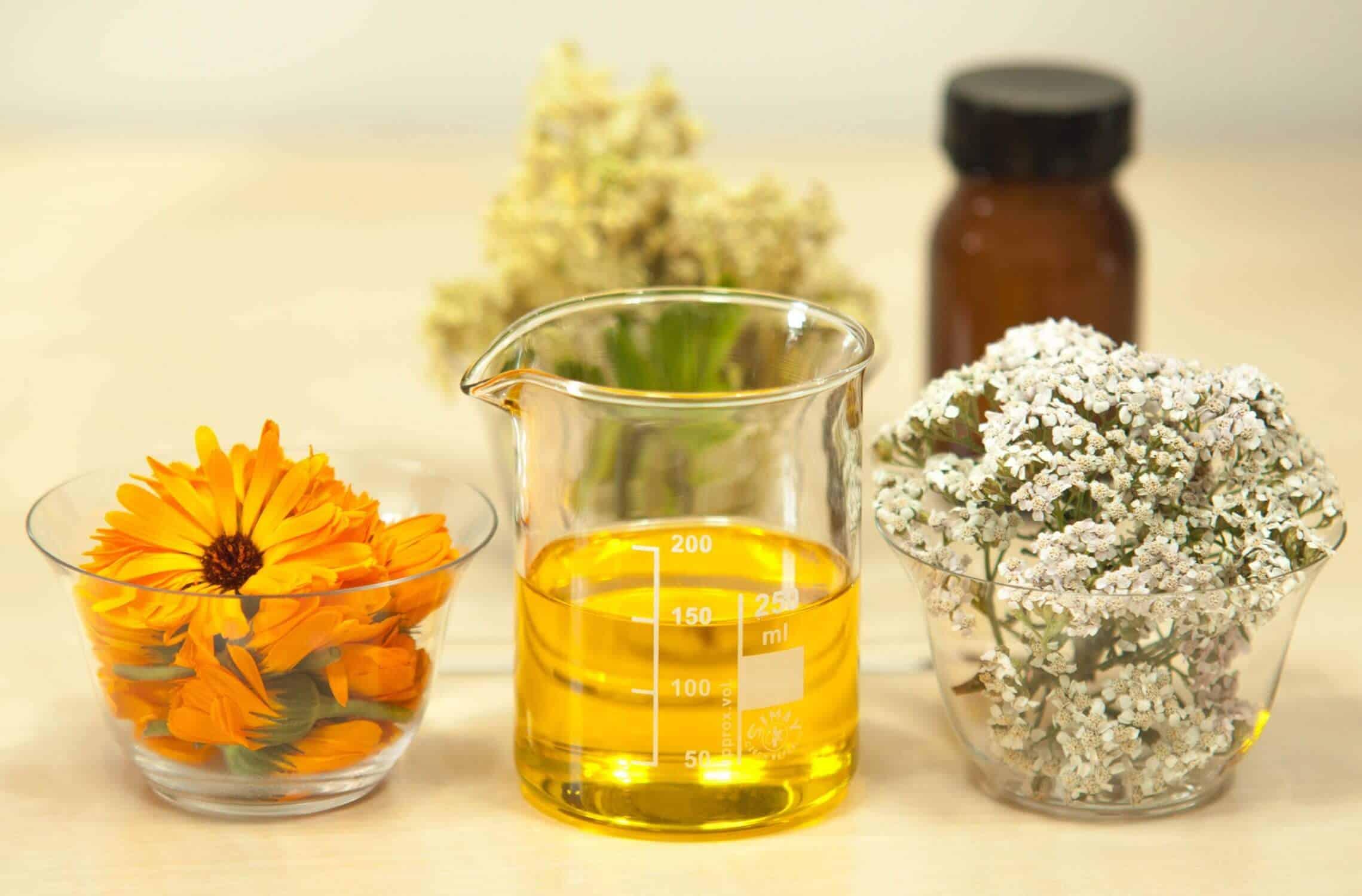Zendocrine Ingredients